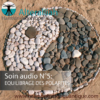 SOIN QUANTIQUE AUDIO 5 - Equilibrage polarités-Alteralliah