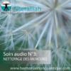 SOIN QUANTIQUE AUDIO 3 - Nettoyage mémoires ADN- Alteralliah