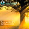 SOIN QUANTIQUE AUDIO 9 -Canal de lumière- Alteralliah