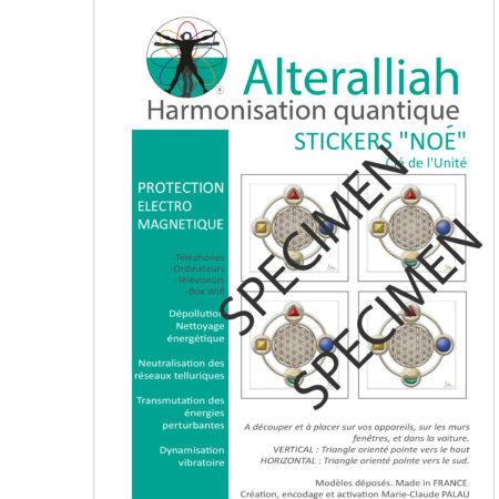 protection électrique et électromagnétique NOÉ- Alteralliah