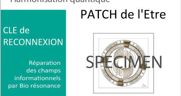patch quantique harmonisant LA SOURCE-Alteralliah