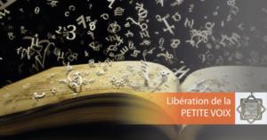 VISIO SOIN QUANTIQUE Libération de la petite Voix @ chez vous, via Internet