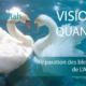 visio soin quantique collectif réparation des blessures de l'Amour -Alteralliah harmonisation quantique