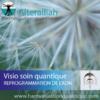 Visio soin quantique en replay - NETTOYAGE DES MEMOIRES REPROGRAMMATION ADN- Alteralliah- Harmonisation quantique