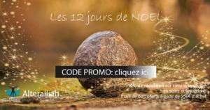LES 12 JOURS DE NOEL @ Boutique en ligne | Villeurbanne | Auvergne-Rhône-Alpes | France